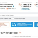 Подача заявок в форме электронного документа через ЕИС